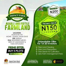 Land for sale Mokoloki Obafemi Owode Ogun