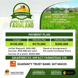Commercial Land Land for sale Mokoloki via Mowe - Ofada Mokoloki Obafemi Owode Ogun