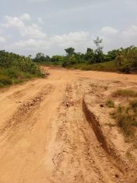 Mixed   Use Land Land for sale SILVER PARK ESTATE EMENE ENUGU STATE  Nkanu Enugu