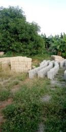 Residential Land for sale Ayobo Ipaja Lagos