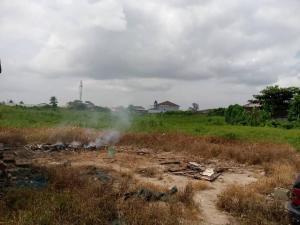 Mixed   Use Land Land for sale Emily akinola street akoka Akoka Yaba Lagos