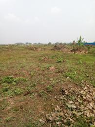 Mixed   Use Land Land for sale Ado Ajah Lagos