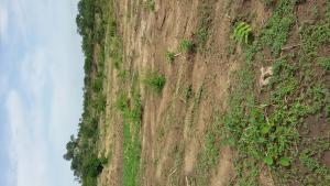 Residential Land Land for sale Kuchiako layout Kuje Abuja