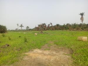 Land for sale Agric-Isawo Rd Agric Ikorodu Lagos