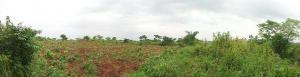 Residential Land Land for sale Asa Olowo Village; Papa Ilaro Expressway, Papalanto Ewekoro Ogun