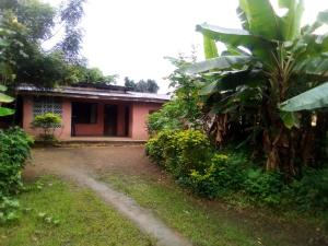 Detached Bungalow House for sale NSIKAK EDUOK Uyo Akwa Ibom