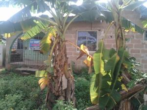 3 bedroom Detached Bungalow House for sale Adeleke Street Ota-Idiroko road/Tomori Ado Odo/Ota Ogun