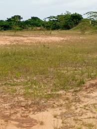 Land for sale BEHIND SHELTER AFRIQUE IBESIKPO ASUTAN LGA UYO Uyo Akwa Ibom