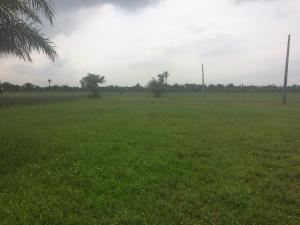 Land for sale Odoragunshi Epe Lagos Epe Road Epe Lagos