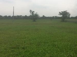 Land for sale Monastery road Sangotedo Lagos