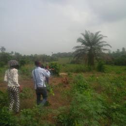 Land for sale Crawford University Area Agbara Agbara-Igbesa Ogun