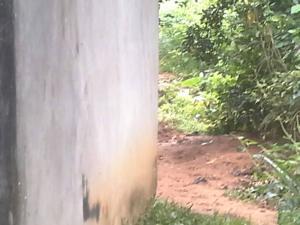 3 bedroom Land for sale Cross river/ekang road Odukpani Cross River