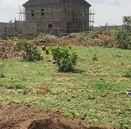 Residential Land Land for sale Victoria Spring Court Along Lekki Free Trade Zone Free Trade Zone Ibeju-Lekki Lagos