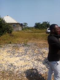 Serviced Residential Land Land for sale Memo home phase 2 akpakin before dangote jetty ibeju lekki  Free Trade Zone Ibeju-Lekki Lagos