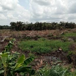 Serviced Residential Land Land for sale Silverpark Estate Enugu Along The International Airport Enugu Enugu