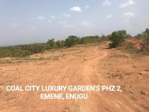 Serviced Residential Land Land for sale Coal City Luxury Gardens phase 2 Nkubor Village Emene  IgboEze North Enugu