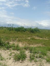 Residential Land Land for sale Diamond Estate Ibeju Lekki Facing Major Express Way Ibeju-Lekki Lagos