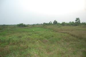 Serviced Residential Land Land for sale Okpara rd Okigwe Imo