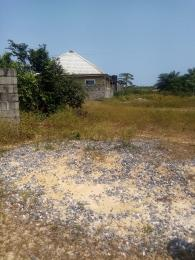 Serviced Residential Land Land for sale Cherry wood Court lekki free trade zones Lagos state  Free Trade Zone Ibeju-Lekki Lagos