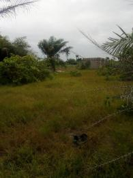 Residential Land Land for sale Diamond Estate Nkwele Onitsha Onitsha North Anambra