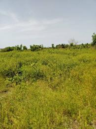Mixed   Use Land Land for sale Origanrigan Village. Origanrigan Ibeju-Lekki Lagos