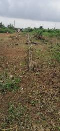 Mixed   Use Land Land for sale Splendor garden okpara road okigwe Okigwe Imo