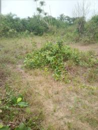 Residential Land for sale Ivory Towers Awka Mgbakwu Town Awka Capital Territory Awka North Anambra