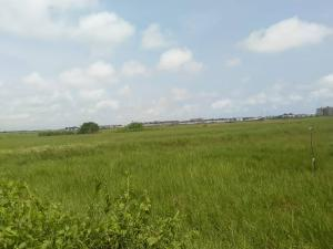 Serviced Residential Land Land for sale Chevron drive road chevron Lekki Lagos