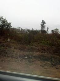 Mixed   Use Land for sale Igbogbo Bayeku Road,(close To Oduloye B/stop) Igbogbo Ikorodu Lagos