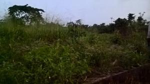 Land for sale Igbogila Idiroko Ado Odo/Ota Ogun