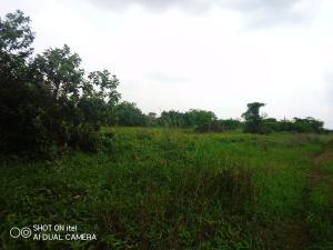 Mixed   Use Land Land for sale Mowe Obafemi Owode Ogun