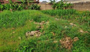 Residential Land Land for sale Okunola  Egbeda Alimosho Lagos