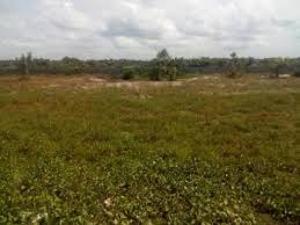 Mixed   Use Land for sale Close To Chinese Farm, Tipper Garage, Agbara Agbara Agbara-Igbesa Ogun