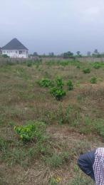 Land for sale Around Sapele Road  Oredo Edo