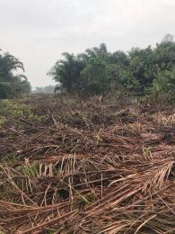 Mixed   Use Land for sale Opposite Eko Akete Abijo Ajah Lagos