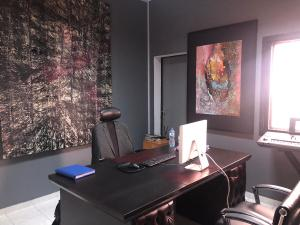Private Office Co working space for rent 2 adeola odeku Adeola Odeku Victoria Island Lagos