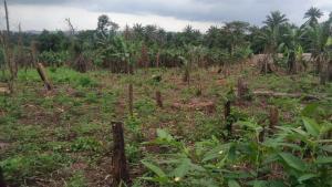Commercial Land for sale Idioson Olodo Facing Main Road Iwo Rd Ibadan Oyo