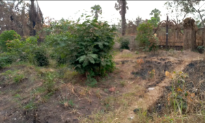 Commercial Land Land for sale Old Enugu/onitsha Road Awka South Anambra