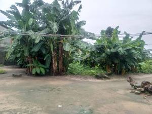 Commercial Land Land for rent Km 16 Port Harcourt - Aba Expressway, Off Boskel Road, Elelenwo, Port Harcourt Obio-Akpor Rivers