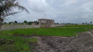 Mixed   Use Land Land for sale Lake View Sangotdo Ajah Near Emperor Estate Sangotedo Ajah Lagos