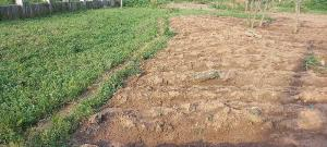 5 bedroom Commercial Land Land for sale Dape district, Lifecamp Dape Abuja