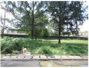 Commercial Land Land for sale Road 5, plot L5 Commercial axis VGC Lekki Lagos