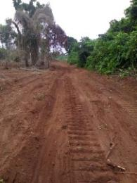 Commercial Land Land for sale Prakland Elite Garden Onitsha South Anambra