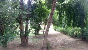 Commercial Land Land for sale opposite Jabi Lake, Jabi Abuja