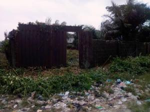 Residential Land Land for sale Royal Palm Estate, Badore, Ajah, Lagos State Badore Ajah Lagos