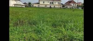 Joint   Venture Land Land for sale Bayo kuku/Gerard  Ikoyi Lagos
