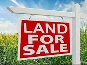 Land for sale Lekki Ilupeju industrial estate Ilupeju Lagos