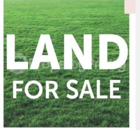 Residential Land for sale At The Back Of The Airport Asaba Delta