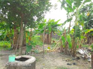 Residential Land Land for sale HERITAGE ESTATE,AGUNFOYE Igbogbo Ikorodu Lagos