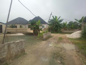 1 bedroom mini flat  Residential Land Land for sale Iguruta Igwurta-Ali Port Harcourt Rivers